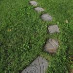"""SnakeTrail"" Still Available Contact Rick@rickclement.com"